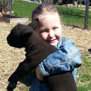 Little girl and lamb