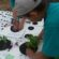 Charitable Grants Help Youth Gardens Flourish