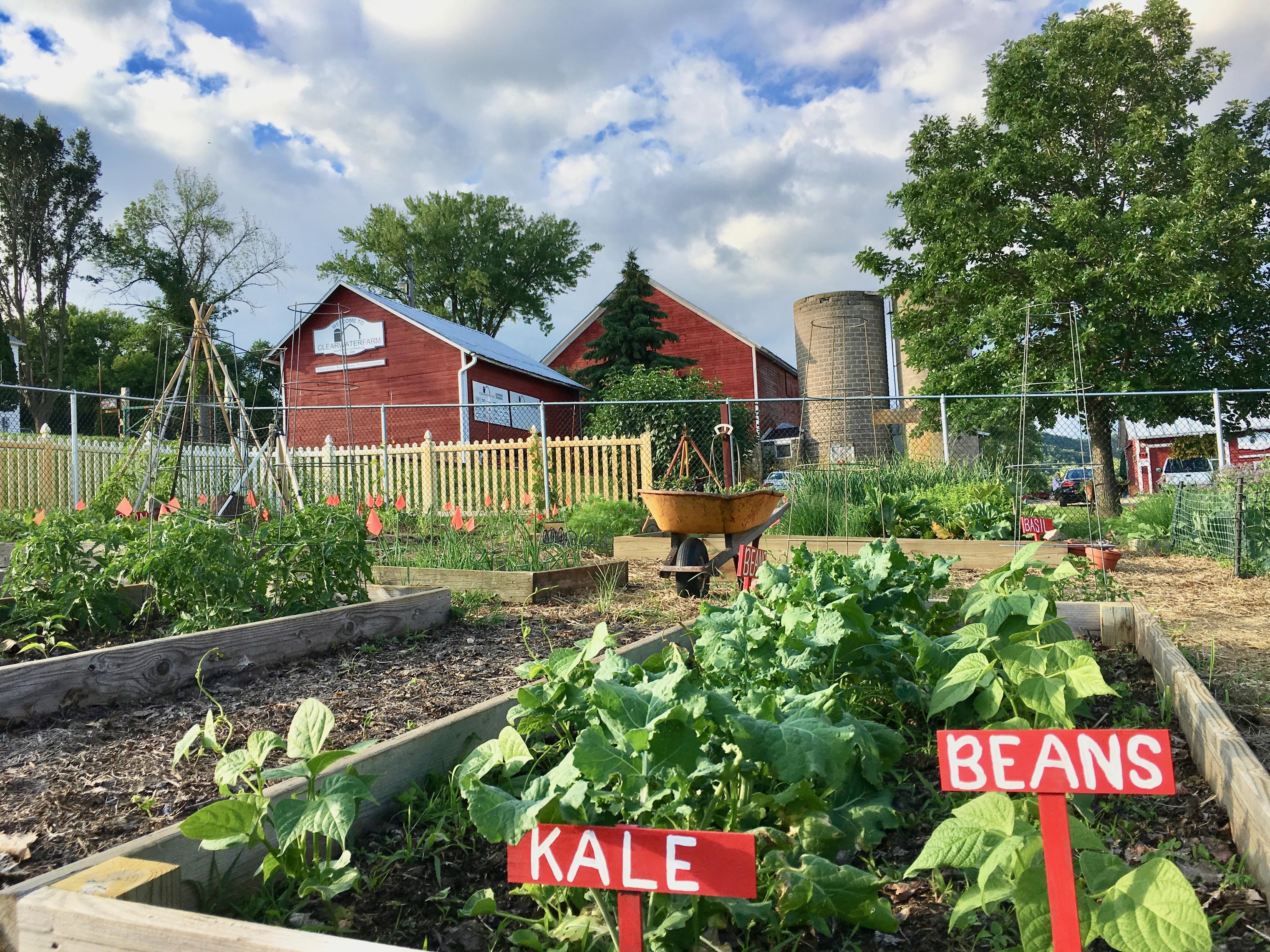 Community Garden - Clearwater Farm